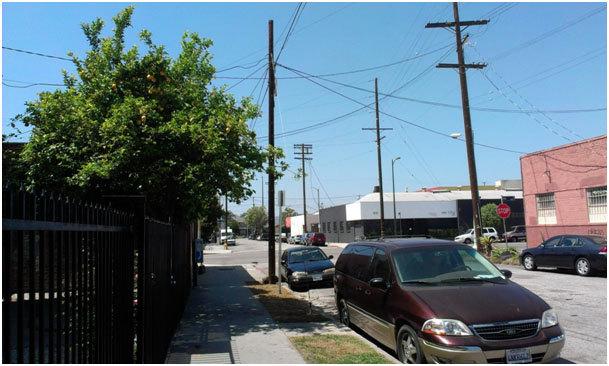 32nd Street in South LA. Note the contrast with LA Live which is just 2km away. Source: Martel Bolt, 2013