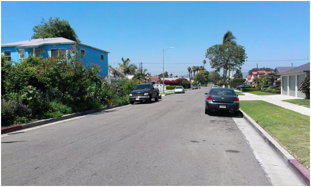 Ron's garden (left) and common parkway in Los Angeles (right), picture made by Marten Bolt