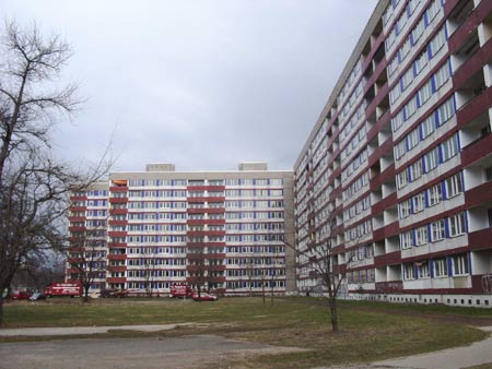 Modernist Housing With Plain Public Space (from http://www.das-neue-dresden.de/images/plattenbauten-strassburger-.jpg)