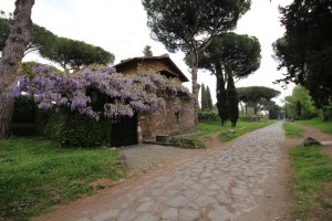The beautiful Via Appia (Picture by Erik van Rijn, 2015)