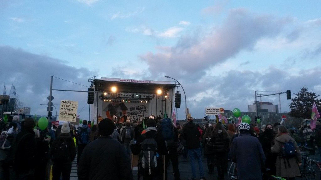 'Wir Haben Es Satt' protest against mass production & genetic engineering techniques, especially against the transatlantic trade and investment partnership between the EU and US (TTIP)  (Source: Rosanne Nieuwesteeg, 2015).