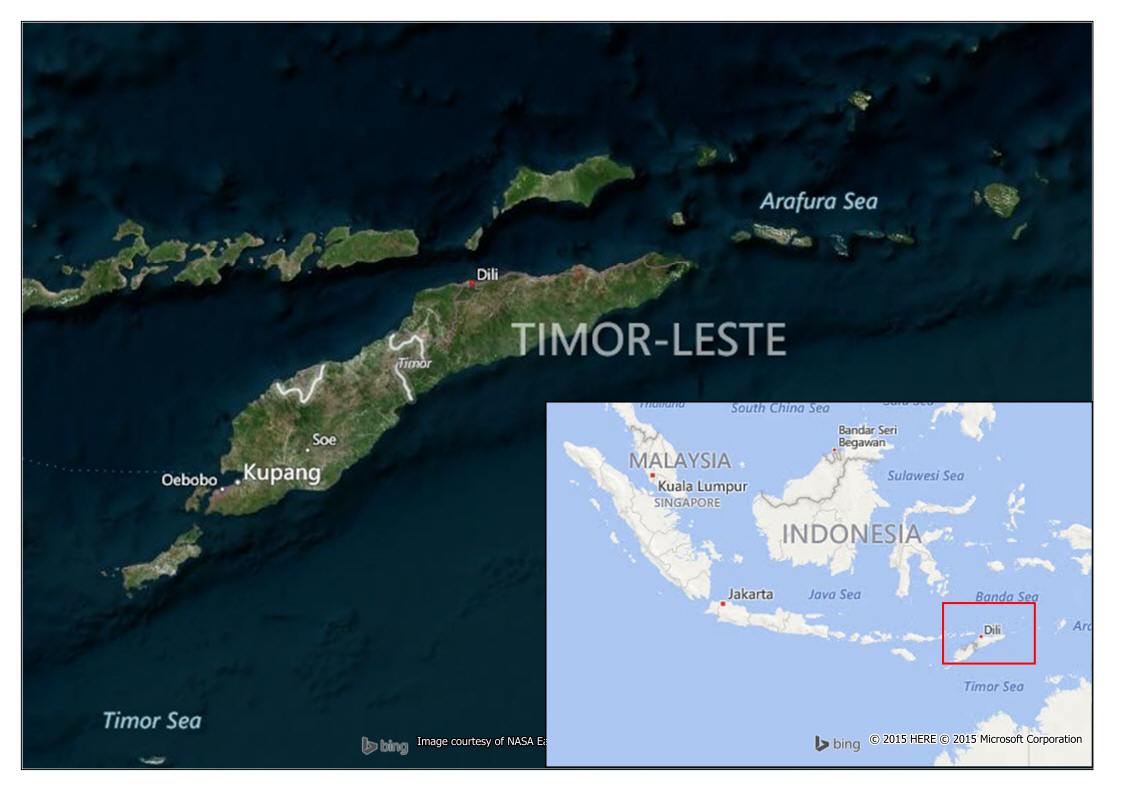 Observing Urban Form in Dili East Timor  TheProtoCity